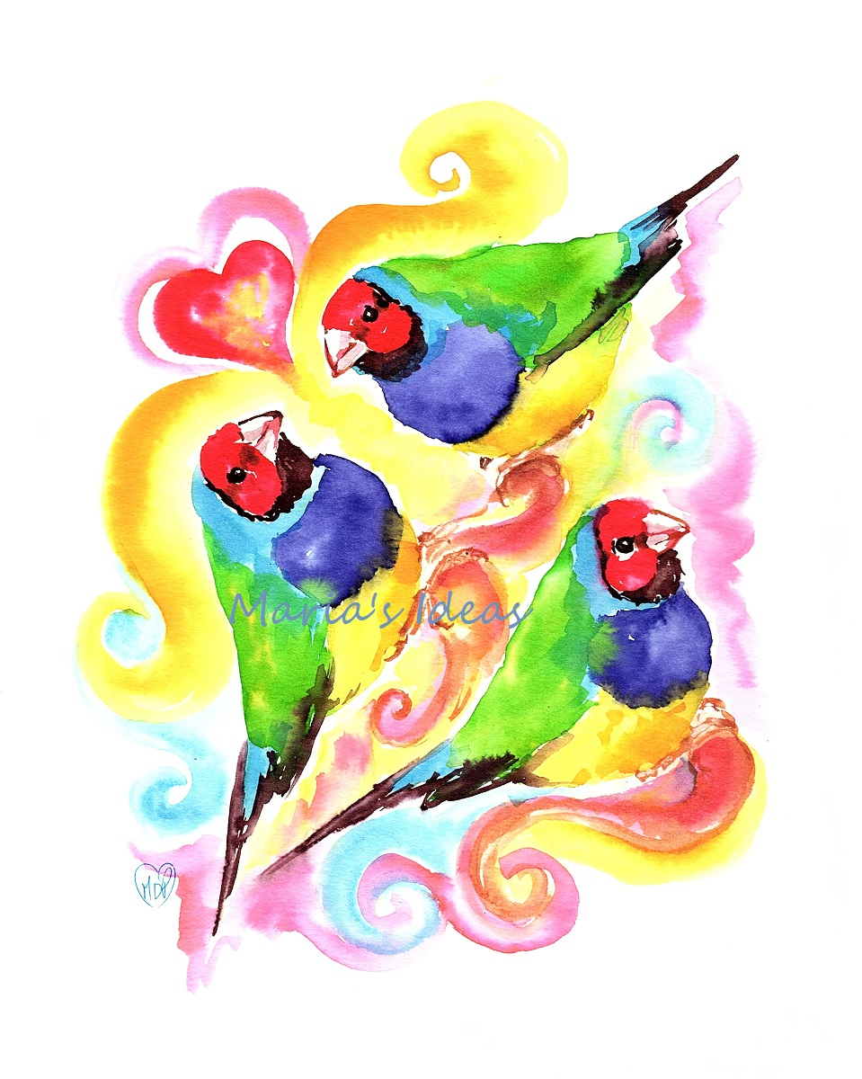 gouldian finch, love art, bird art, valentine