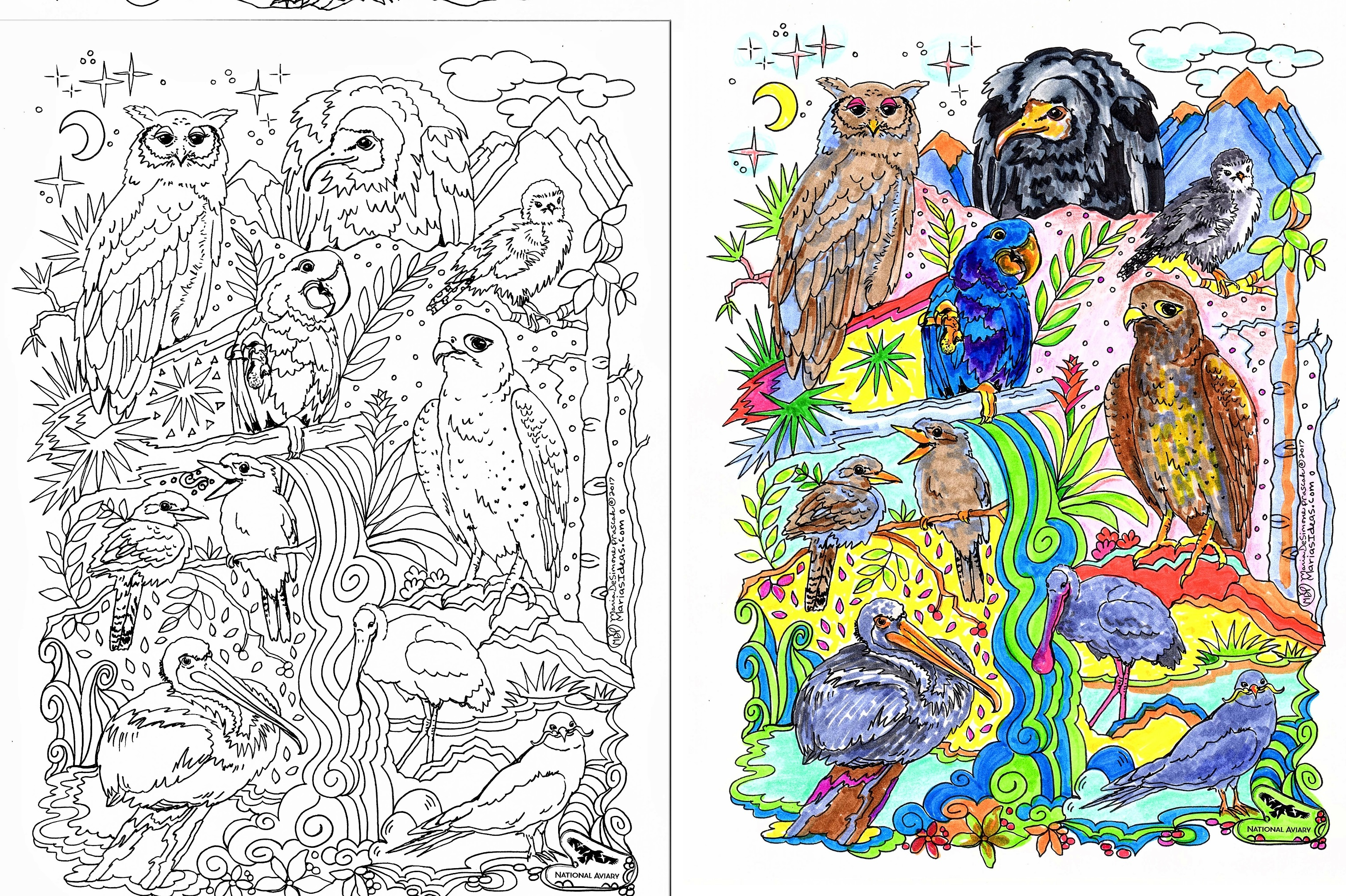 coloring pages, bird color page, national aviary